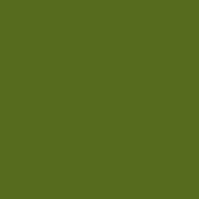 Cartulina guarro a4 185 grs verde safari