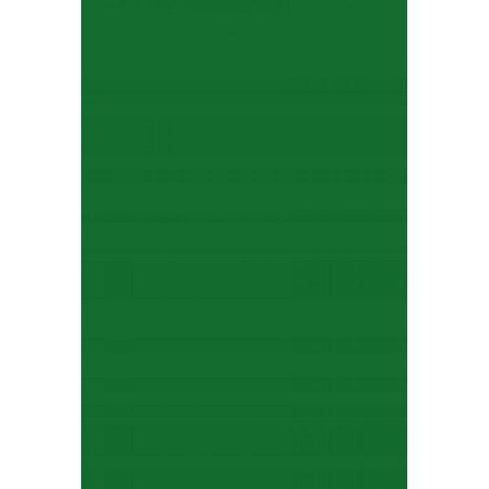 Cartulina guarro 50x65 verde amazonas