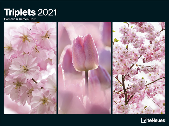 Calendario 2021 triplets 48x64 / 64x48