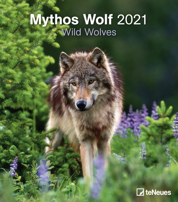 Calendario 2021 wild wolves 34x34