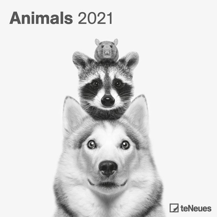 Calendario 2021 animals 30x30