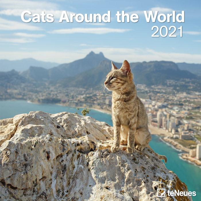 Calendario 2021 cats around the world 30x30