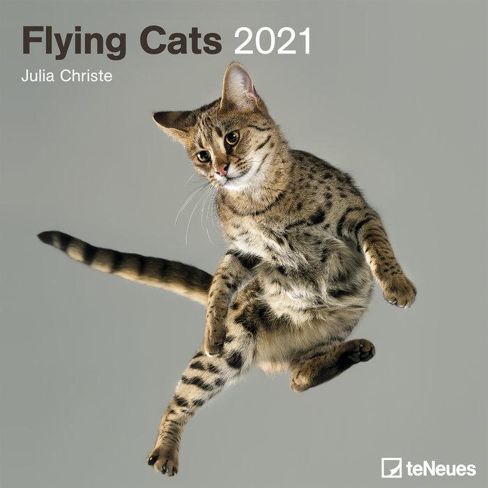 Calendario 2021 flying cats 30x30