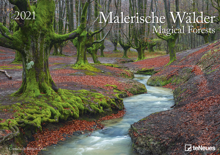Calendario 2021 magical forests 29.7x42 / 42x29.7