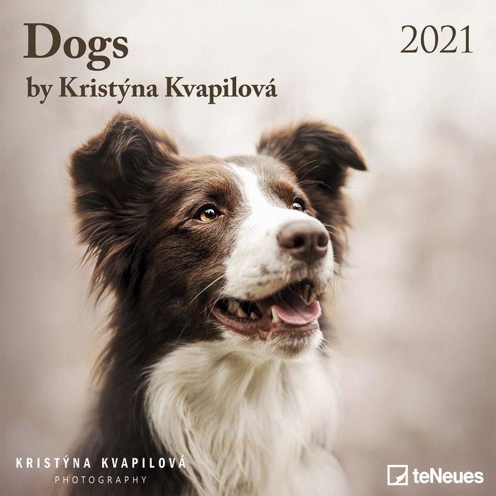 Calendario 2021 dogs by kristÝna kvapilova new 30x30