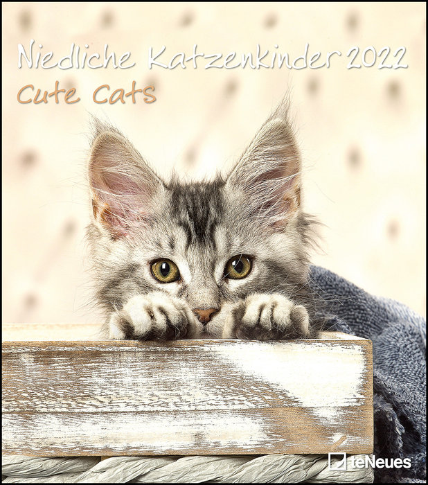 Calendario 2022 cute cats 30x34