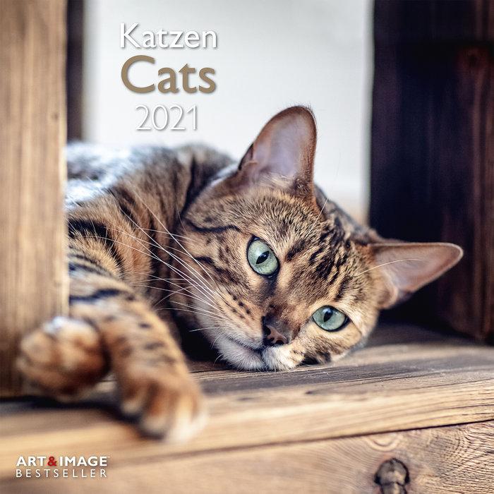 Calendario 2021 cats 30x30