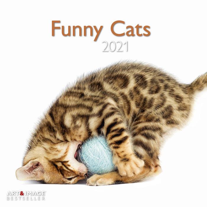 Calendario 2021 funny cats 30x30