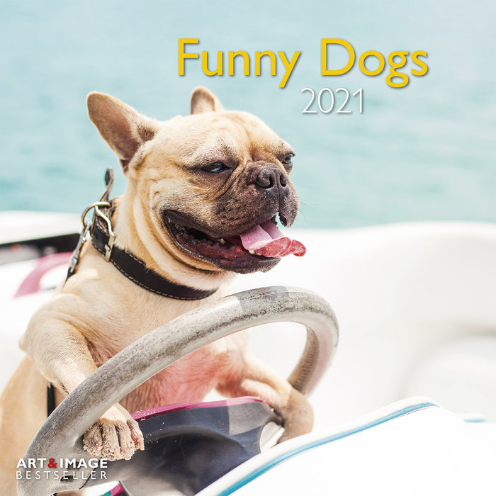 Calendario 2021 funny dogs 30x30