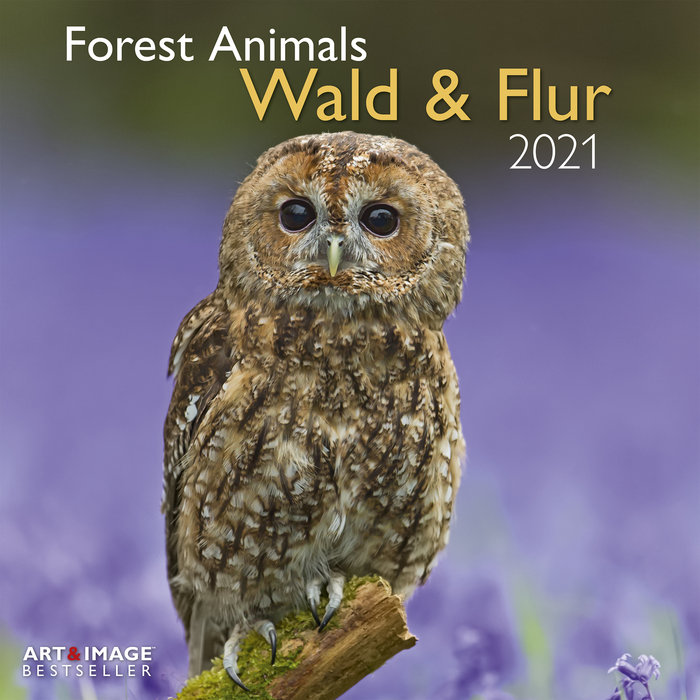 Calendario 2021 forest animals 30x30