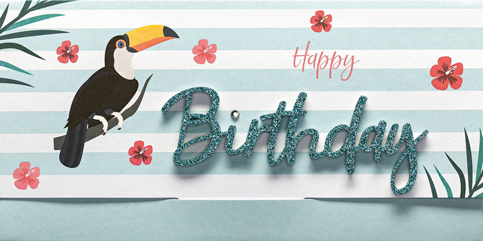 Tarjeton y sobre birthday tucan