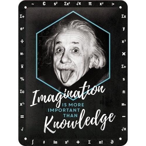 Placa de metal 15x20 cm einstein-imagination & knowledge