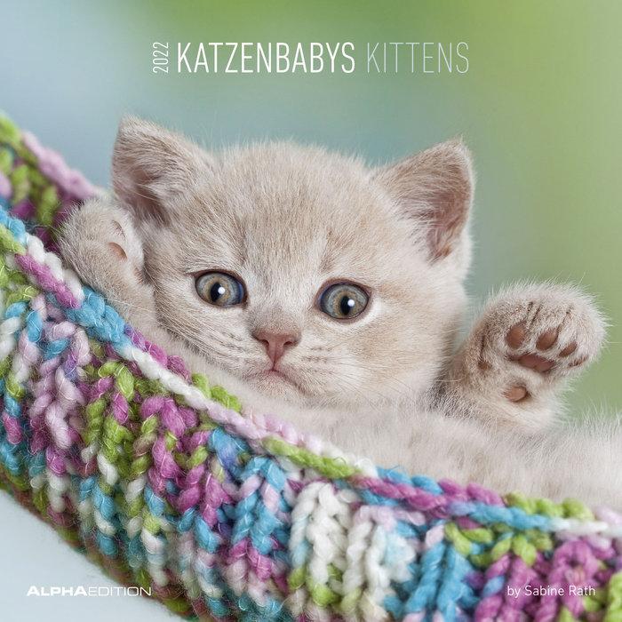 Calendario 2022 kittens 30x30 teneues