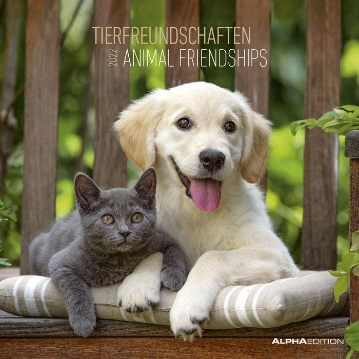 Calendario 2022 animal friendships 30x30 teneues