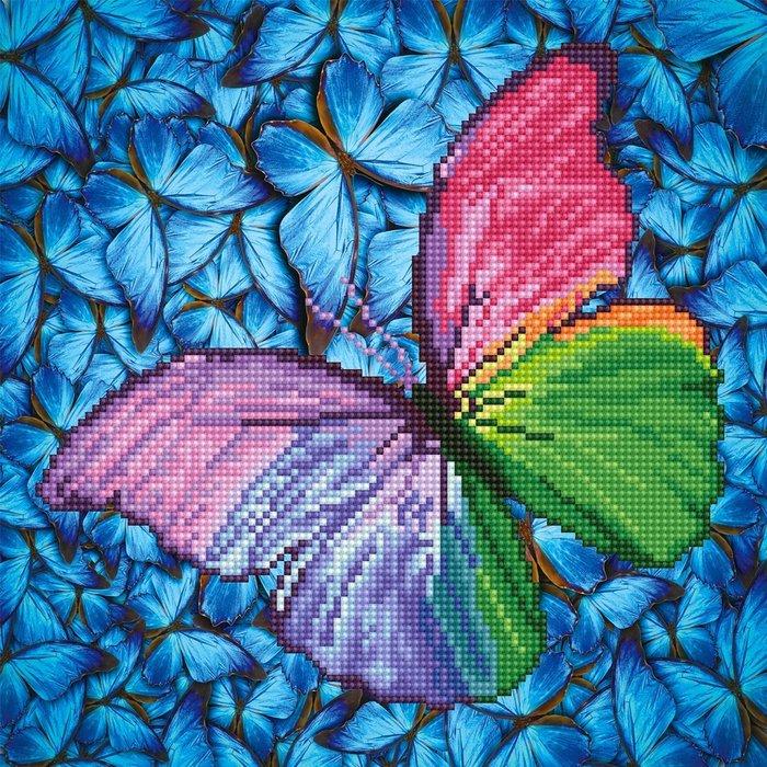 Diamond dotz mariposa by pink
