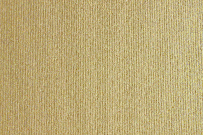 Cartulina sadipal liso/rugoso 50x70 crema