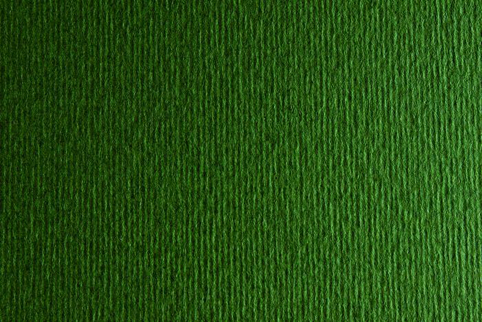 Cartulina sadipal liso/rugoso 50x70 verdone