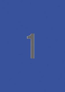 Etiquetas azules permanentes 210,0 x 297,0 mm 20 hojas