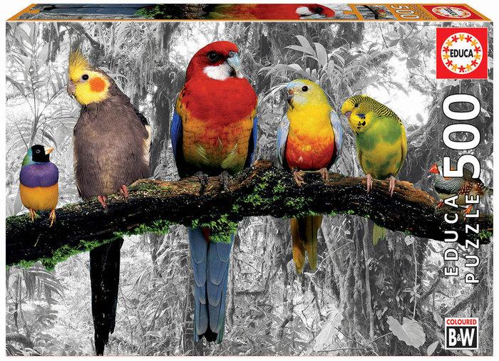 Puzzle educa 500 piezas pajaros en la jungla