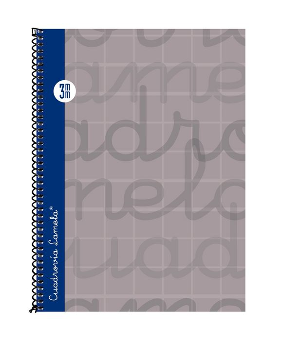 Cuaderno 4º forrado cuadrovia 3mm 80h tapa dura gris 07cte0