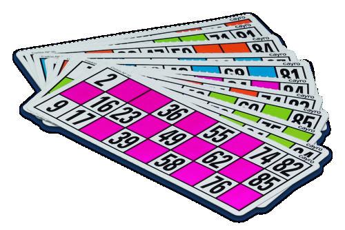 Cartones loteria cayro 24 uds