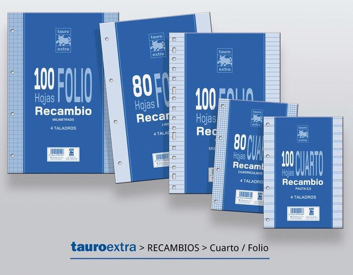 Recambio folio cuadro 3mm 100h tauro extra