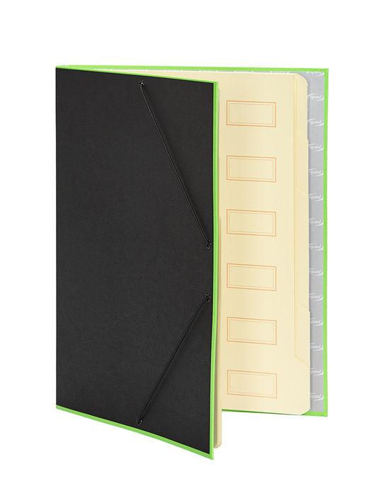 Carpeta clasificadora borde neon verde