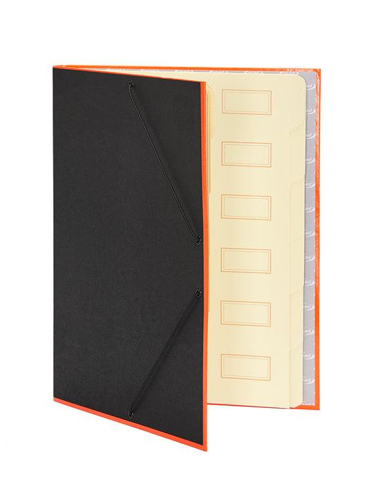 Carpeta clasificadora borde neon naranja