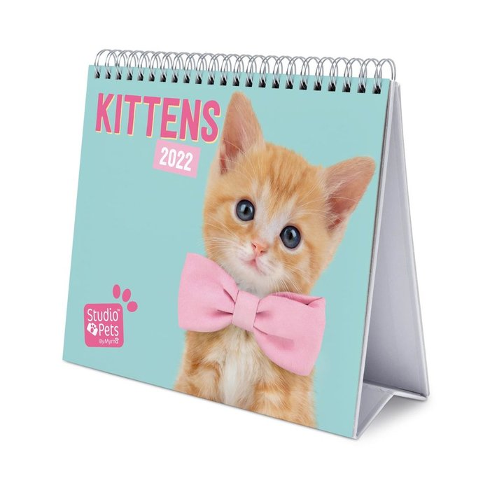 Calendario de escritorio deluxe 2022 studio pets cats