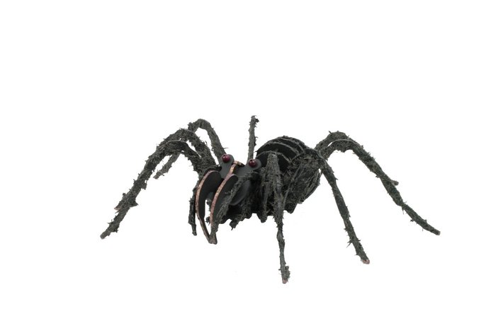 Maqueta tarantula 3d 1pl d1
