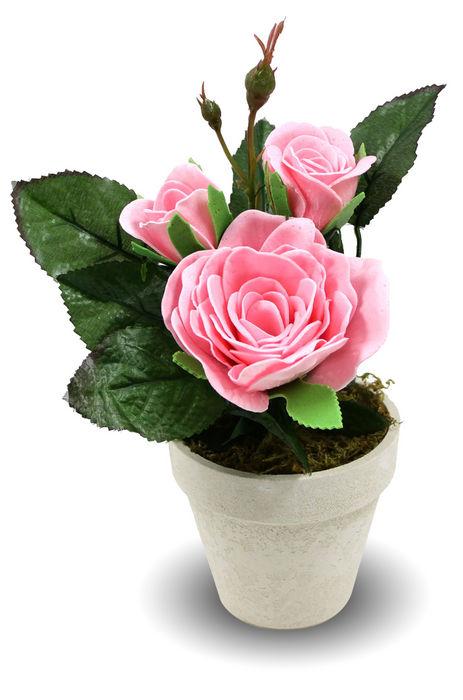 Rosas de jabon maceta rosa rosa