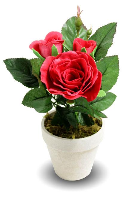 Rosas de jabon maceta rosa roja
